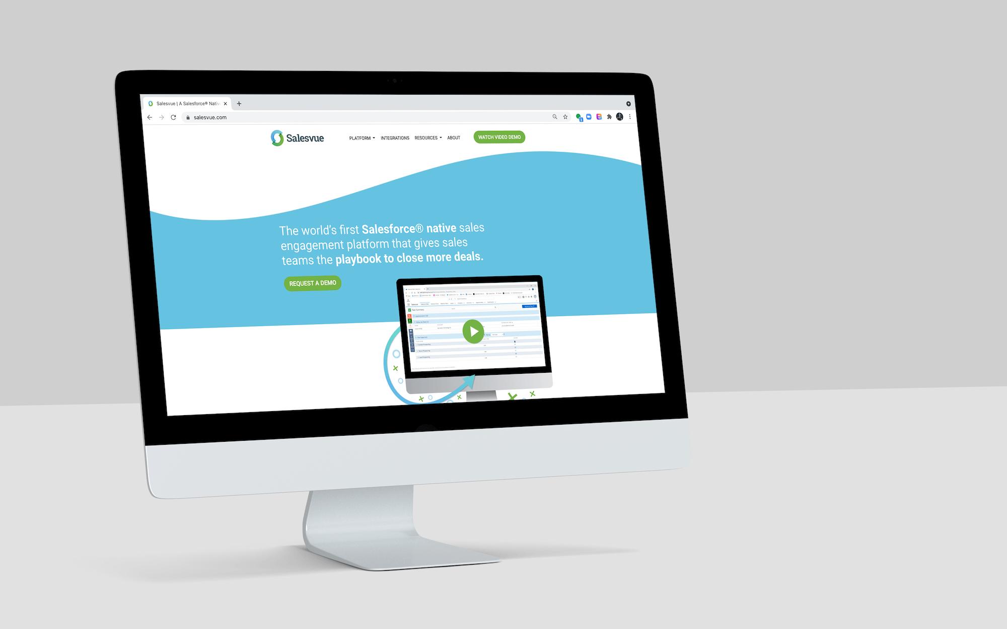Salesvue Website Design